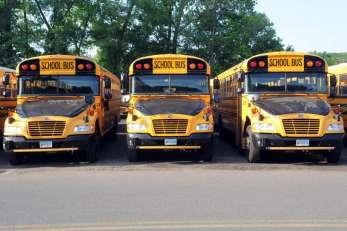 Shelton buses